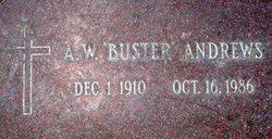Allison Buster <i>Wayne</i> Andrews
