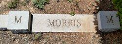 Voy Lee Morris