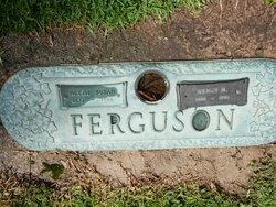 Henry Marion Ferguson