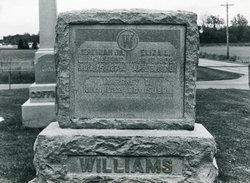 Eliza L. <i>Kinzer</i> Williams
