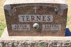 Agatha <i>Welk</i> Ternes