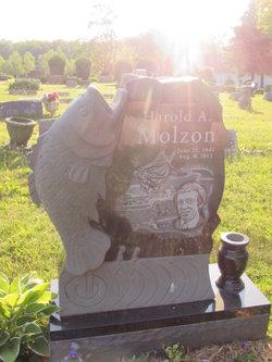 Harold Arthur Molzon