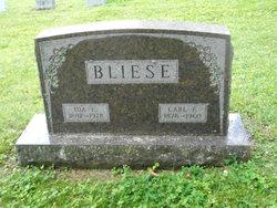 Carl F. Bliese