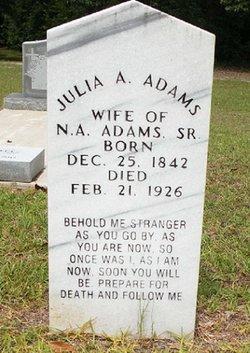 Julia Ann <i>Davis</i> Adams