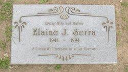 Elaine Joyce <i>Wall</i> Serra
