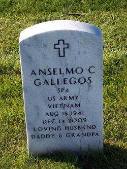 Anselmo C Gallegos