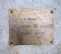 Alexander C Adams