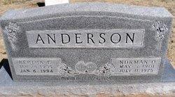 Bertha Ellen Anderson