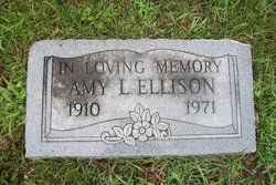 Amy L Ellison