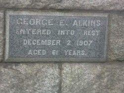 George Edwin Alkins