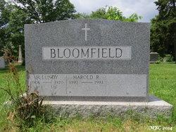 Howard Lundy Bloomfield
