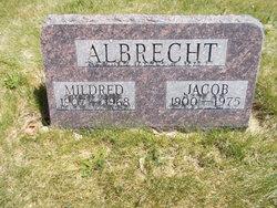 Jacob Albrecht