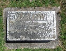 Annie Bilow