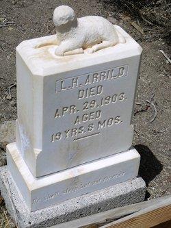 Louis H. Arrild