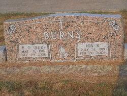 Barnmal O Bud Burns