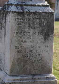 Bridget Mitchell