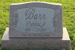 Patricia J Barr