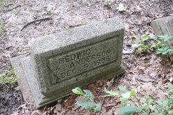 Hedwig Anderson