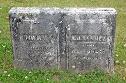 A. J. Bonney