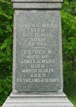 James D Wood