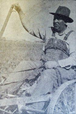 Lero Curtis