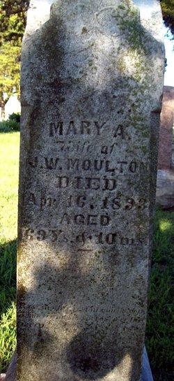 Mary Ann Nellie <i>Lewis</i> Moulton