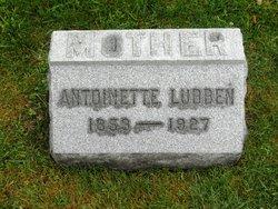 Antoinette <i>Steinhauser</i> Lubben