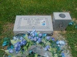 David D Fairley