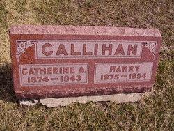 Catherine A Callihan