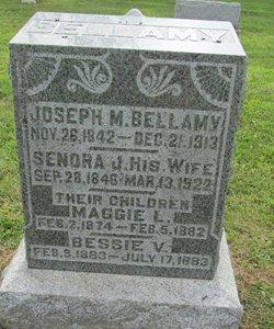 Joseph M Bellamy