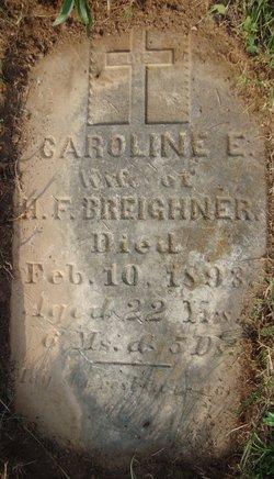 Caroline Elizabeth Carrie <i>Robinson</i> Breighner