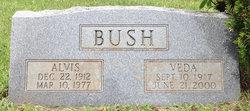 Veda Bush