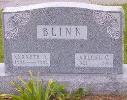 Arlene Catherine <i>Schaub</i> Blinn
