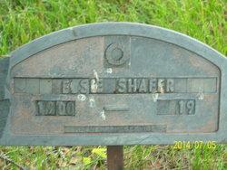 Elsie Ellen Shafer