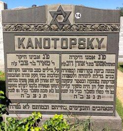 Meyer Kanotopsky
