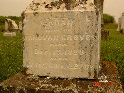 Sarah <i>Hicks</i> Groves