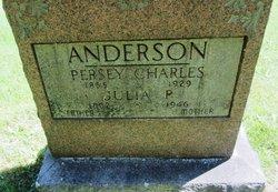 Julia P Anderson