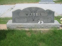 Lydia Ann <i>Strelsky</i> Wallis
