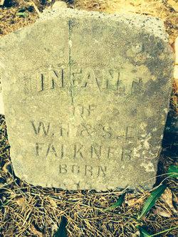 Infant Falkner