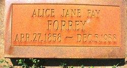 Alice Jane <i>Fay</i> Forrey