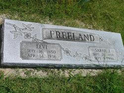 Levi Freeland
