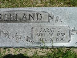 Sarah J Freeland