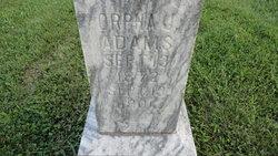Orpha Jane <i>Brooks</i> Adams