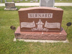 Anthony W Bernard