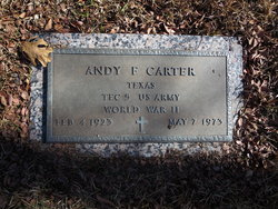 Andy F Carter