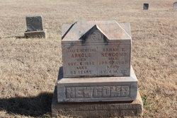 Sarah E <i>Newcomb</i> Arnold