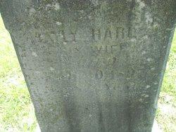 Mary A. <i>Harlin</i> Emerson