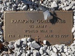 Raymond Odell Babb