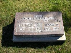 Susan Elizabeth Lizzie or Susie <i>Adkisson</i> Strickland