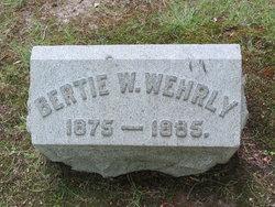 Bertie A. Wehrly